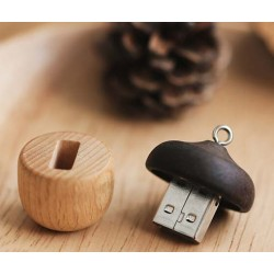 Clé usb Nuts